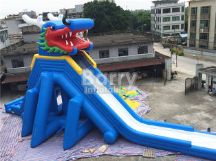 Adult Inflatable Water Slide